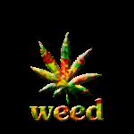 Marihuana: toen en nu